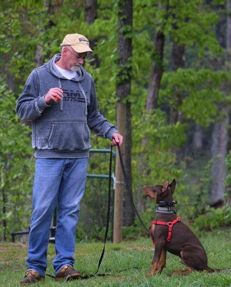 mark commanding a dog
